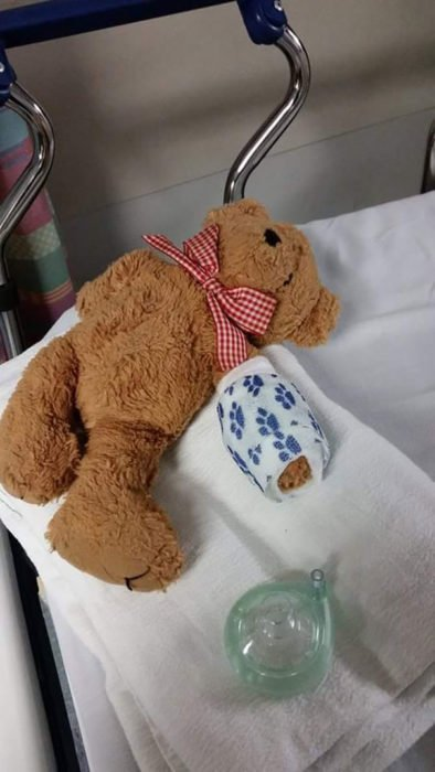 oso de peluche con brazo fracturado