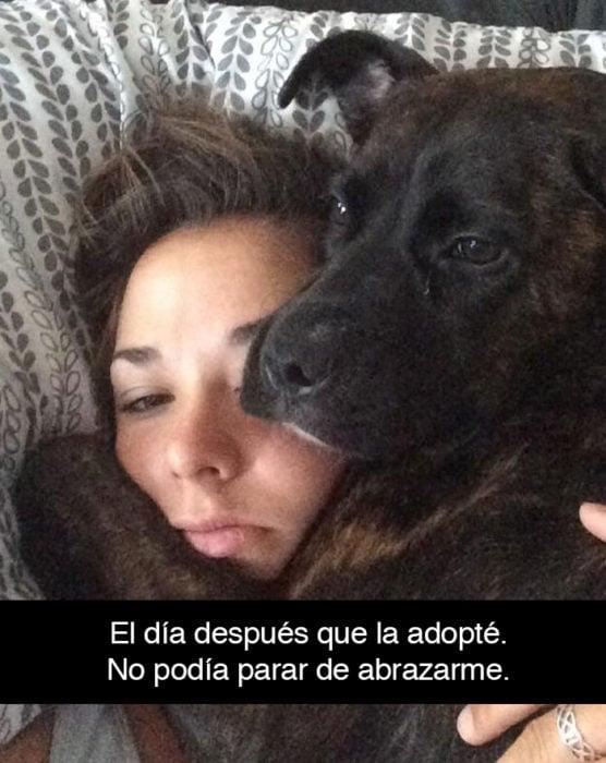 Snapchat perros - perro abrazando a su dueña