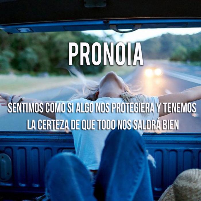 imagen que explica el significado de la palabra pronoia