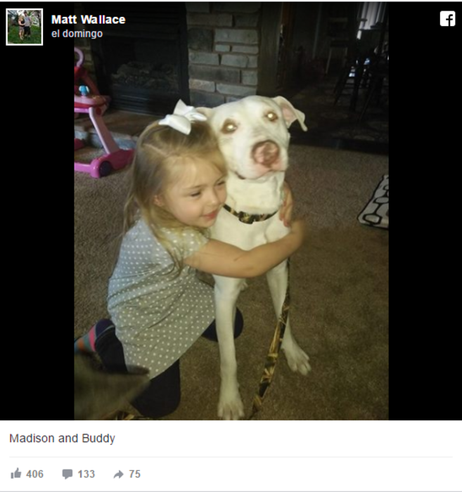 madison-y-buddy-fb