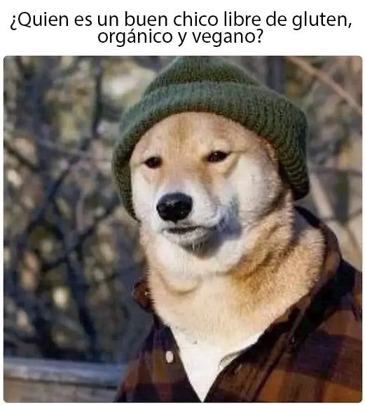 No seas ese perro