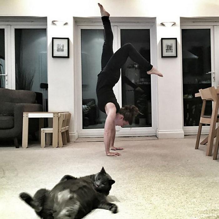 mujer haciendo yoga, frente un gato gordo