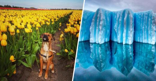 Cover majestuosas fotografías de naturaleza que te quitarán el aliento