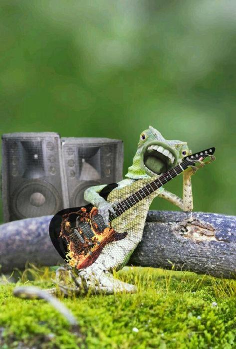 Batalla PS lagartija - rockeando