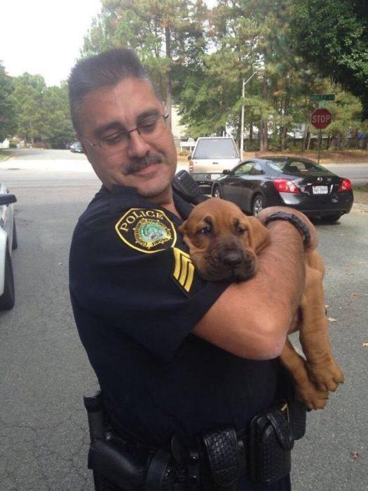 policía cargando a cachorro de servicio