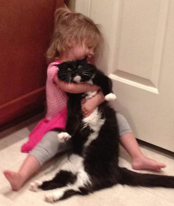 Niña juega con gato enojado