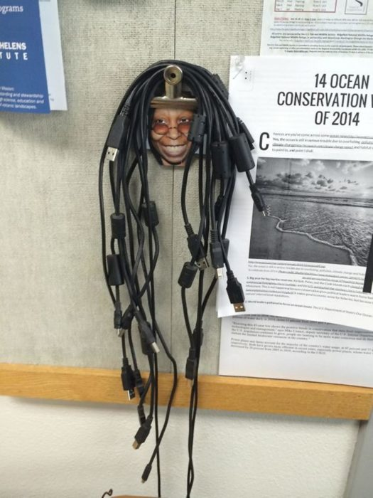 whoopi cables idea rastas