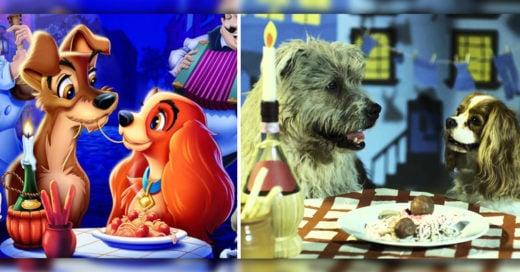 Cover Animales de Disney y sus homólogos de la vida real