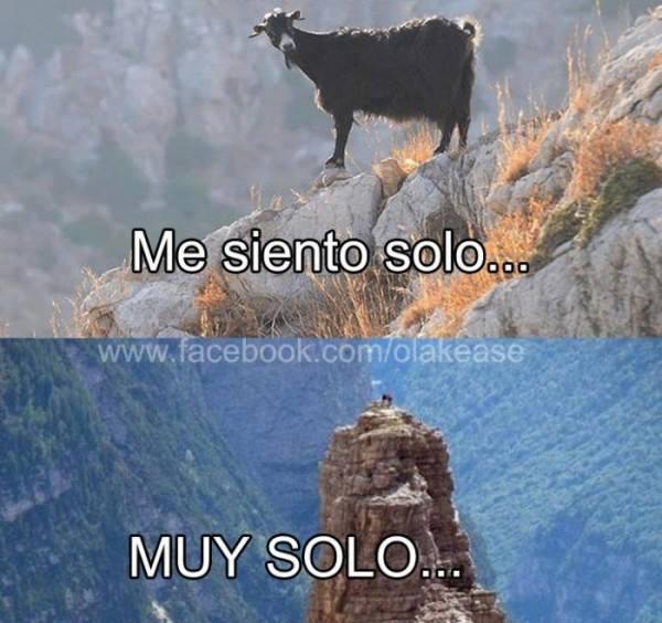 Memes soledad - cabra me siento solo, muy solo