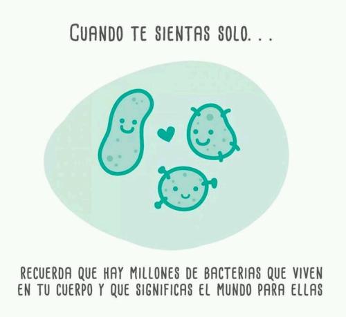 Memes soledad - bacterias soledad