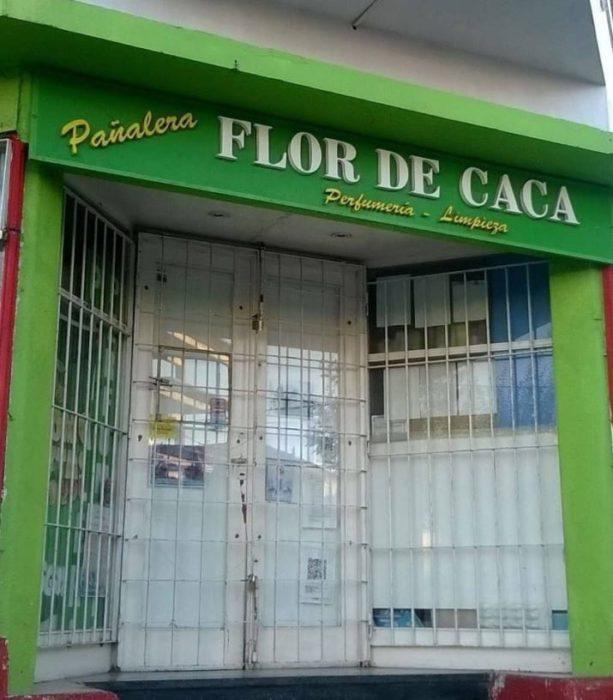 Pañales Flor de Caca