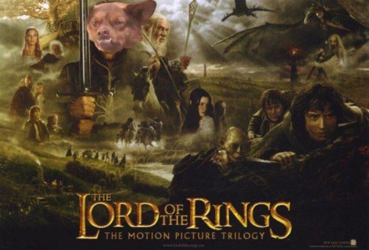 Poster del Señor de los Anillos con chilaquil