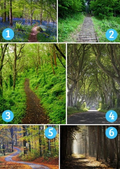 caminos de naturaleza 6