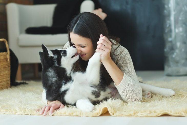 mujer jugando con un cachorro husky