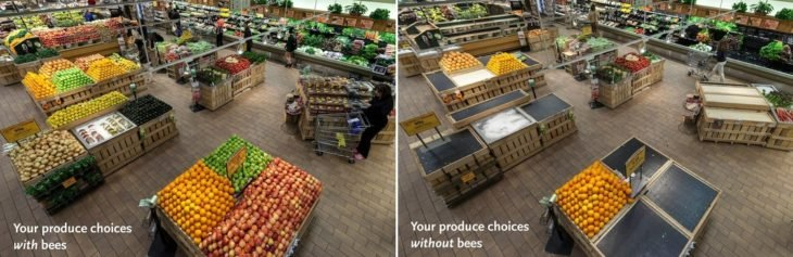 Antes y después de las abejas super mercado
