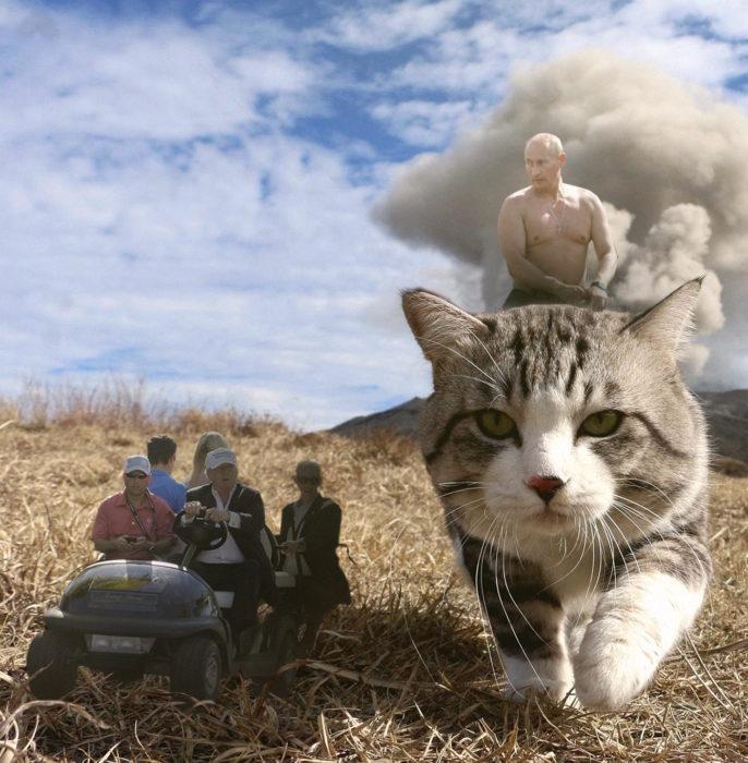 putin kim y trump editados en una cuatrimoto a un lado de un gato gigante