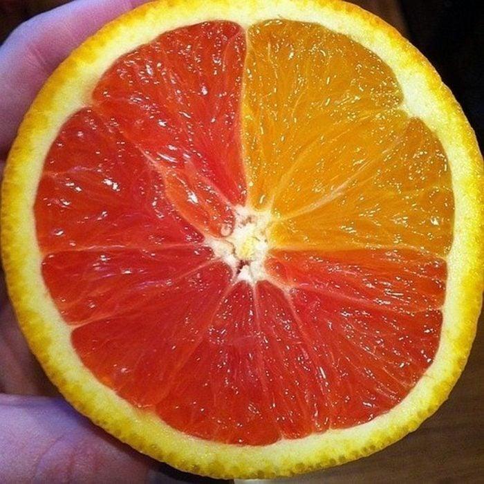 naranja mutante