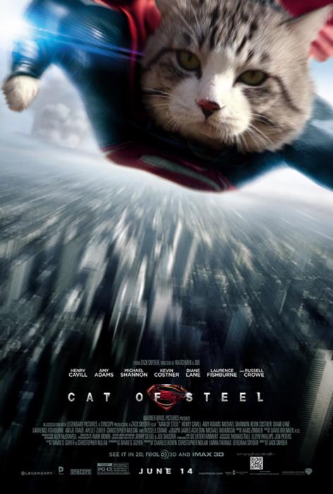 gato editado como superman