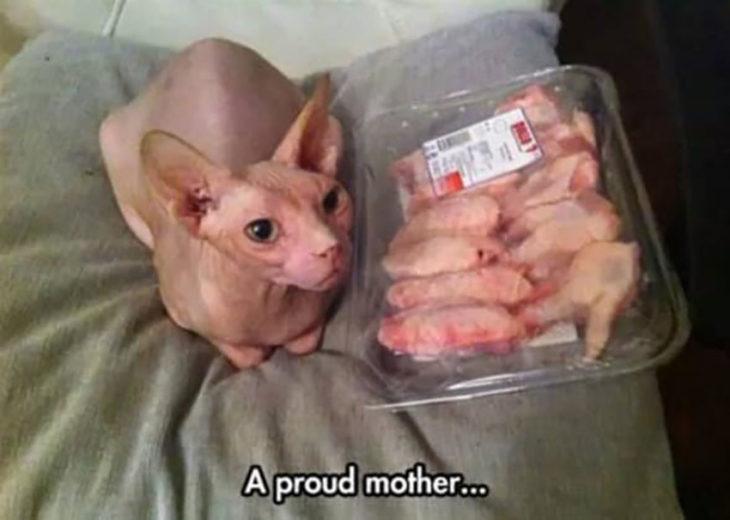 una madre orgullosa