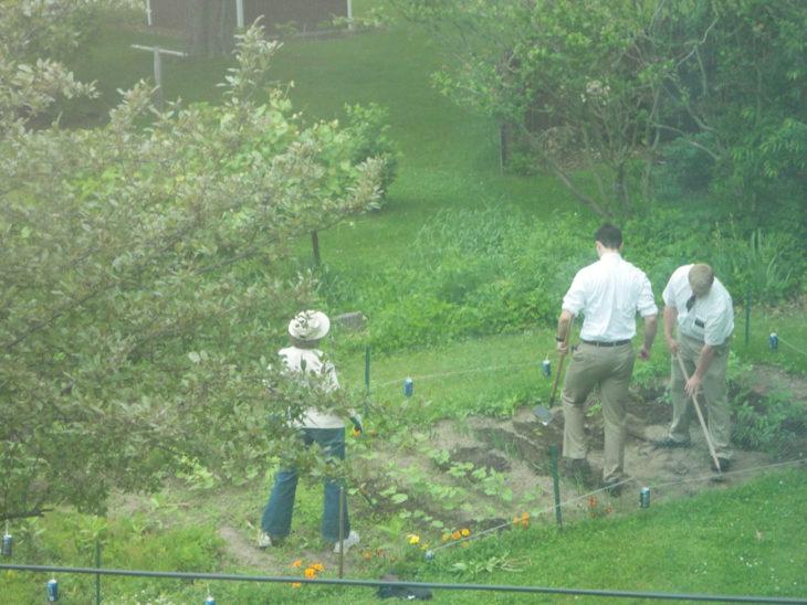 mormones ayudando en el jardín