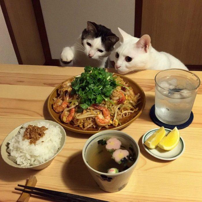 comer de la mesa