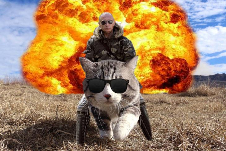putin montado en un gato deja atrás explosión