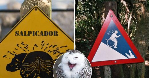 Cover Divertidos letreros en el zoológico que son más reflexivos de lo que crees