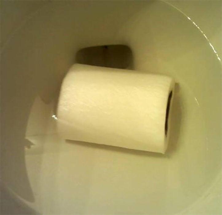 rollo de papel se cae al retrete
