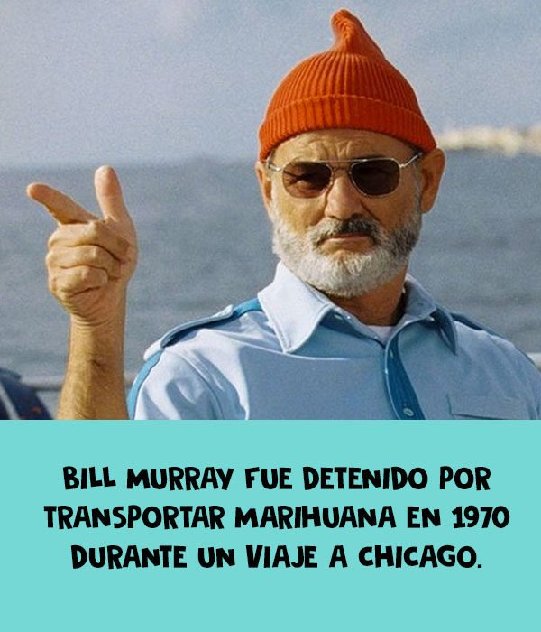 marihuana bill murray