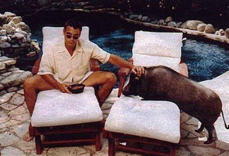 George Clooney con cerdo