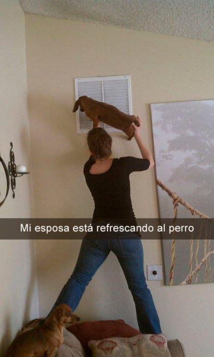 mujer sosteniendo perro enfrente de aire acondicionado