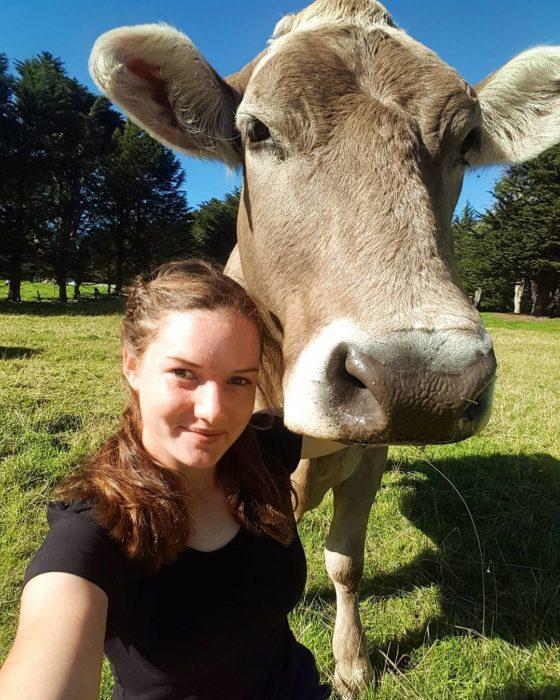 Selfie chica y su vaca