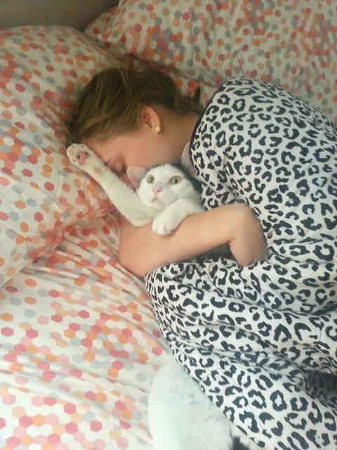 Gato siendo asfixiado mientras su humana lo abraza