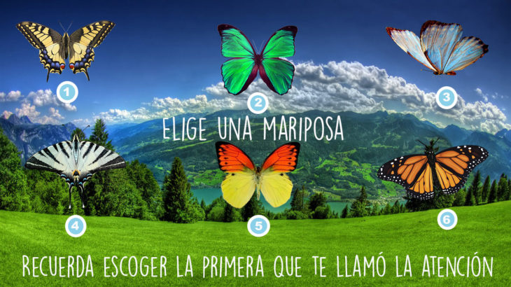 test de las 6 mariposas