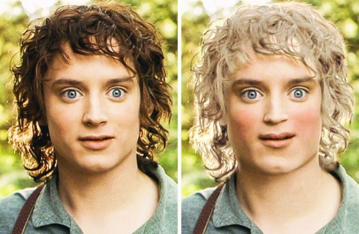 Frodo Bolsón cambio de la película al libro