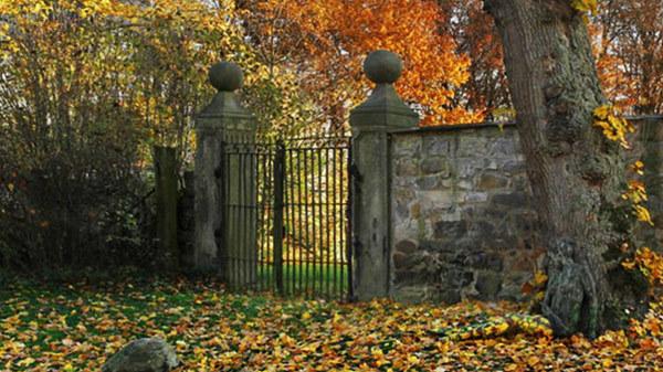 paisaje de otoño jardín