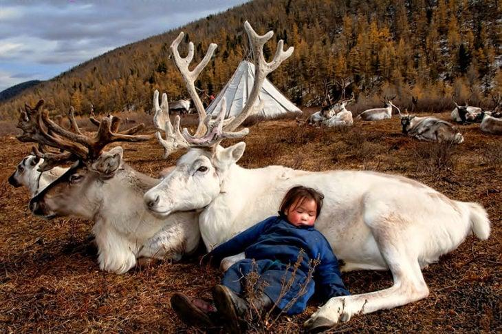 niña durmiendo sobre un reno