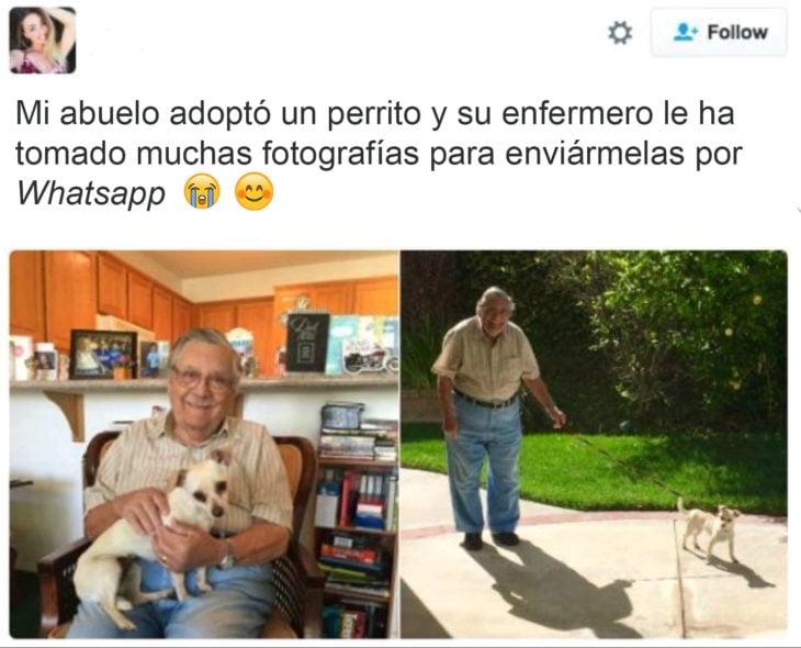 abuelo perrito instagram