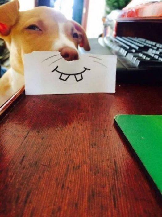 perro con una sonrisa dibujada con pluma