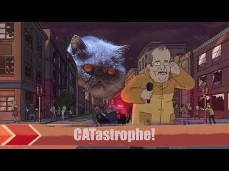 Esto es un gatastrofe