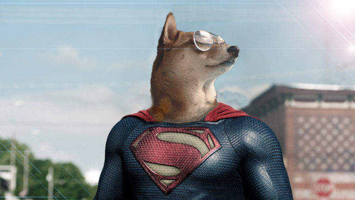 Super shibaman