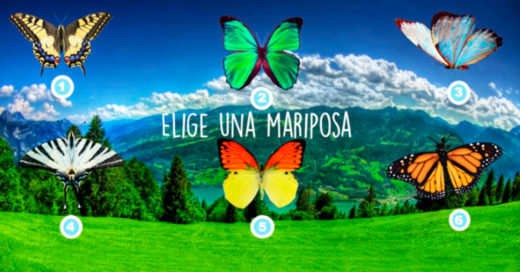 Cover El test de las MARIPOSAS