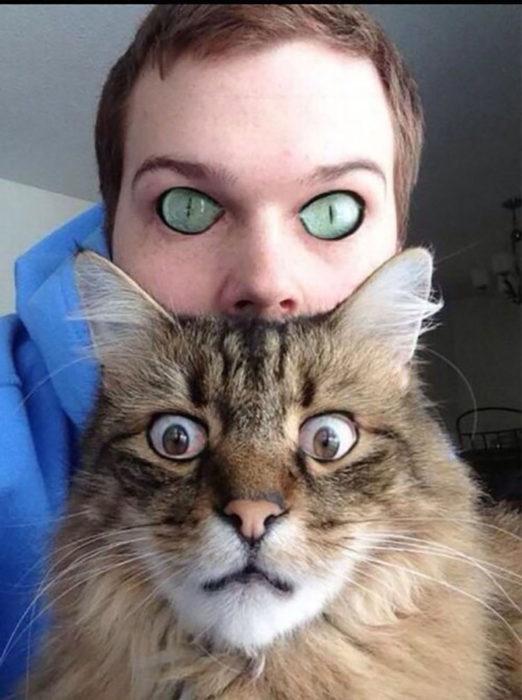 se cambian los ojos del gato con los ojos del joven