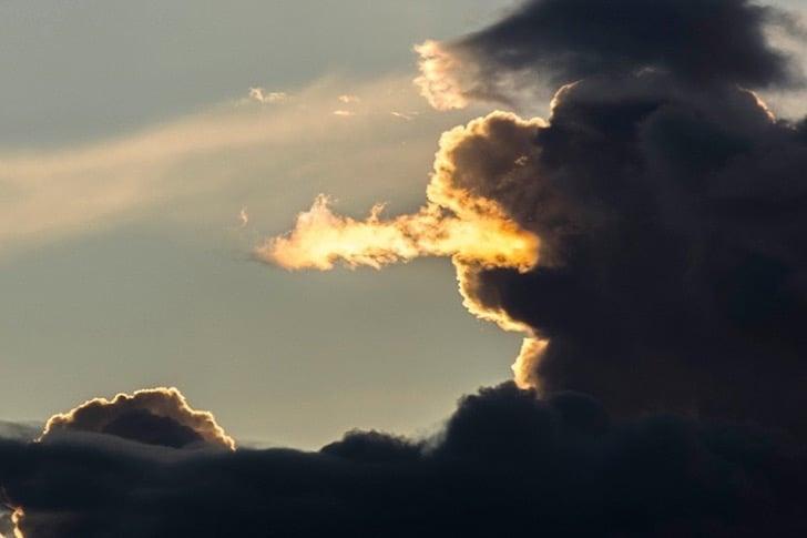 El dragón de las luces