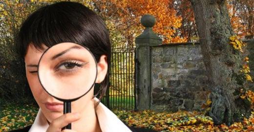 Cover ¿Puedes ver a la mujer escondida en esta foto?