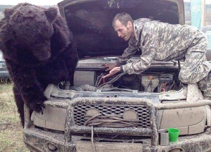 oso mecanico camion ruso