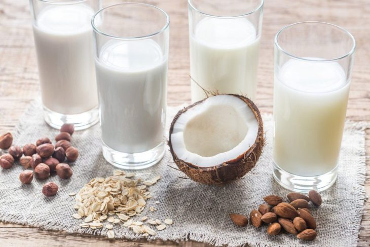 variedad de leches vegetales