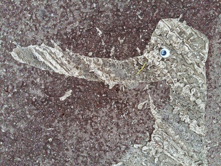 mancha en el piso que parece pato después de poner unos ojos locos