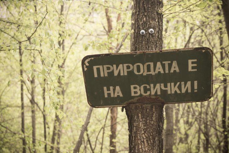 eyebombing para un letrero en un árbol