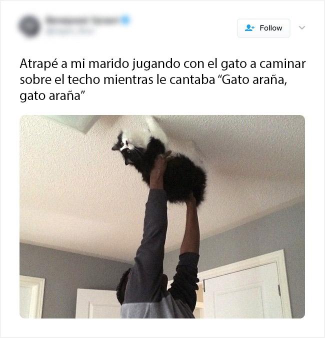 el gato no la esta pasando bien